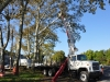 zoo-treework-2